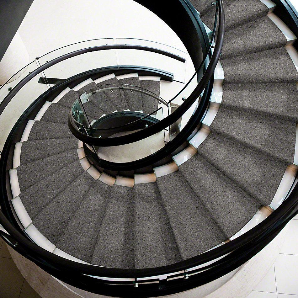 Shaw Floors Shaw Flooring Gallery Mcentire Temptation 00521_5520G