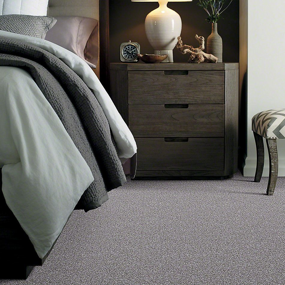Shaw Floors Value Collections Admire Me Net Meteor 00521_E0857