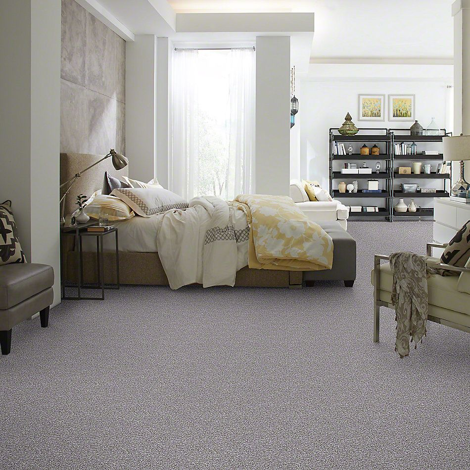 Shaw Floors Value Collections Reflect With Me Net Meteor 00521_E0869