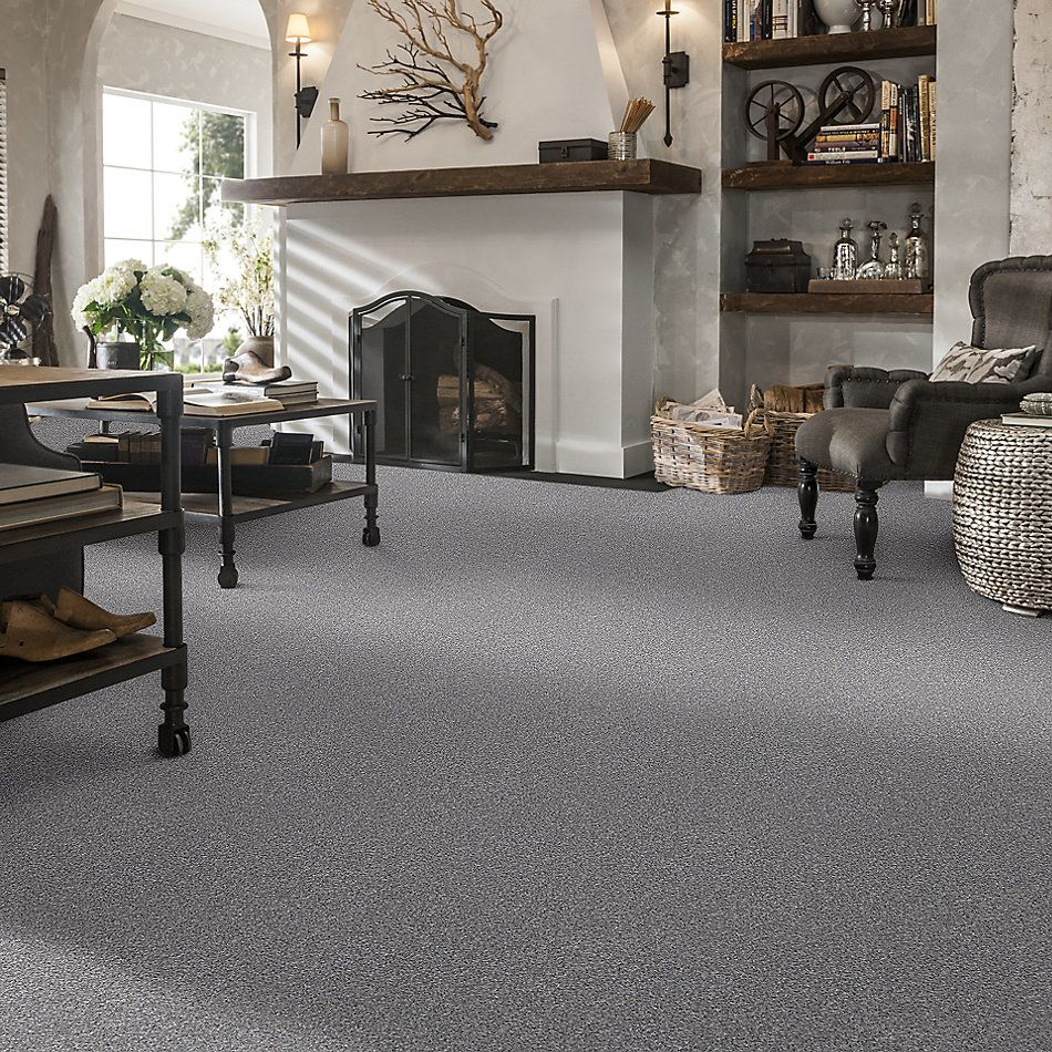 Shaw Floors Value Collections Xz165 Net Arctic Shadow 00521_XZ165