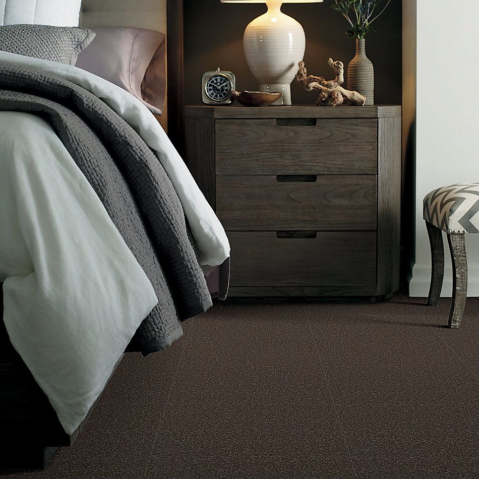 Shaw Floors Value Collections Sandy Hollow Cl II Net Arrowhead 00522_5E510