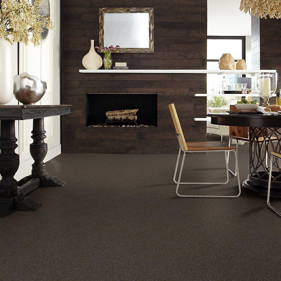 Shaw Floors Value Collections Sandy Hollow Cl III Net Arrowhead 00522_5E511