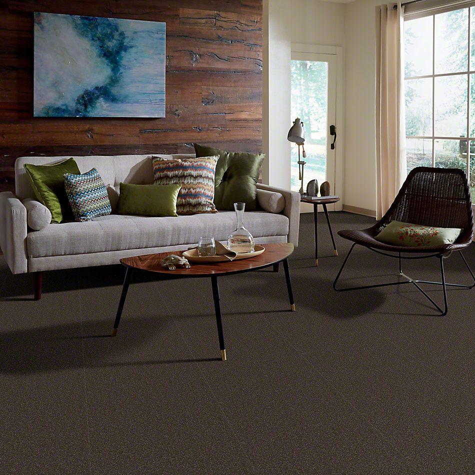 Shaw Floors Sandy Hollow Classic Iv 12′ Arrowhead 00522_E0554
