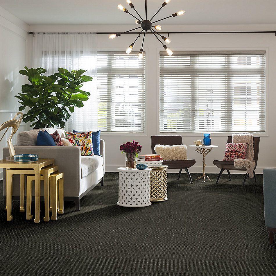 Anderson Tuftex American Home Fashions Sassy Mercury 00522_ZA947