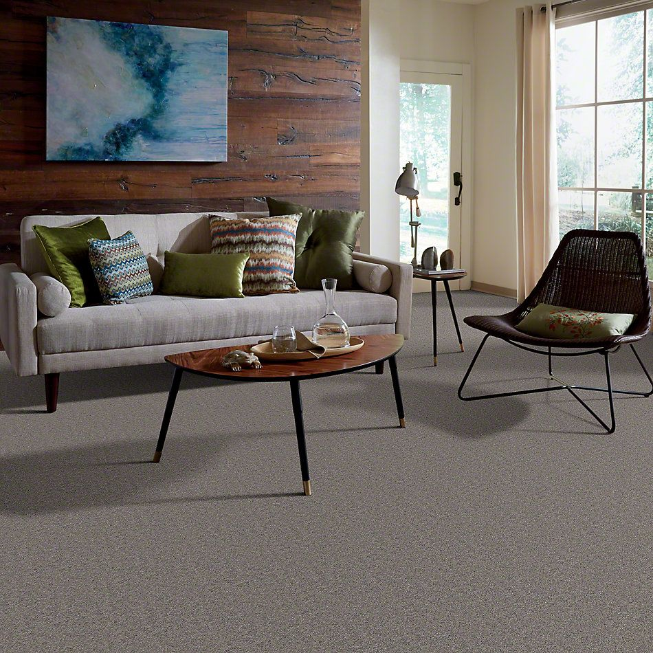 Shaw Floors Caress By Shaw Quiet Comfort Classic II Chinchilla 00526_CCB97
