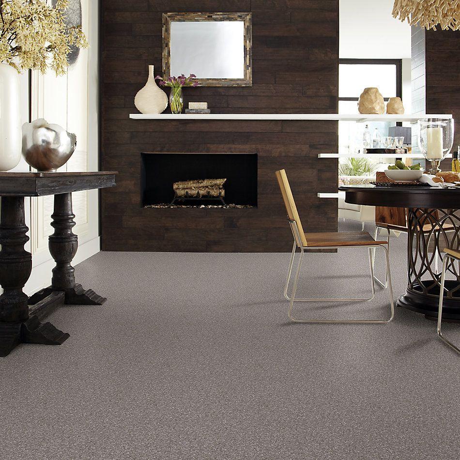 Shaw Floors Nfa/Apg Barracan Classic I Chinchilla 00526_NA074