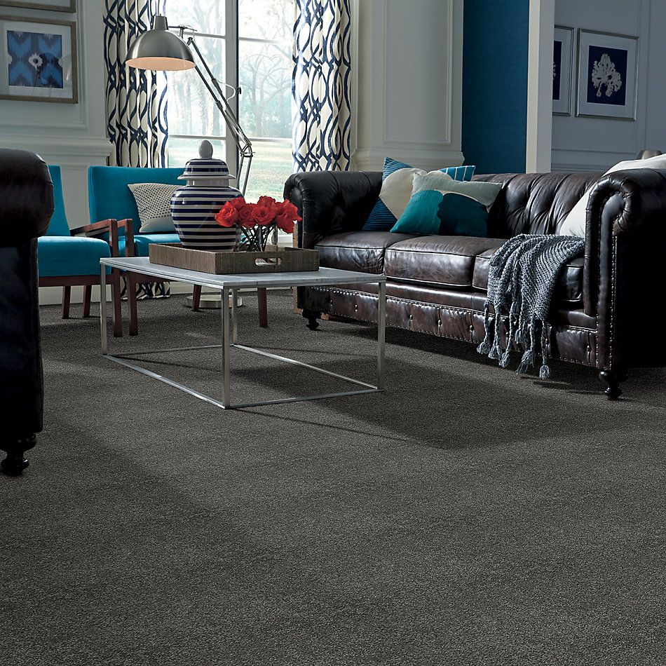 Shaw Floors Caress By Shaw Cashmere II Lg Onyx 00528_CC10B