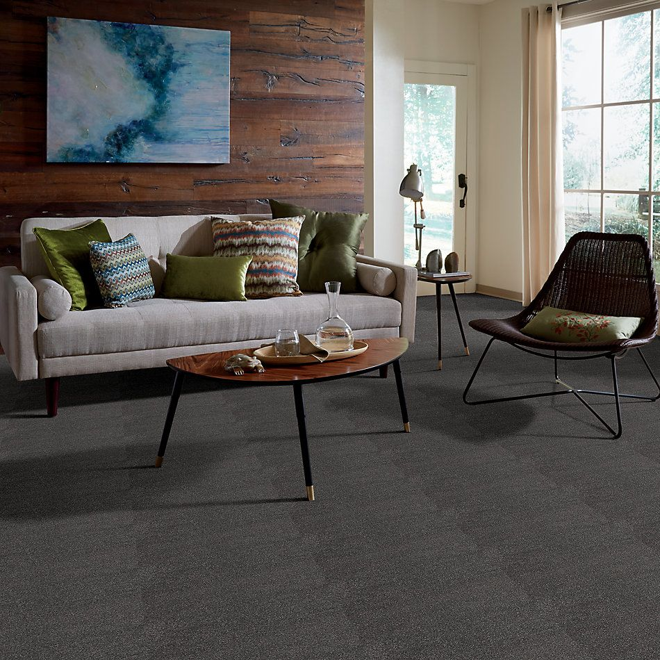 Shaw Floors Value Collections Cashmere I Lg Net Armory 00529_CC47B