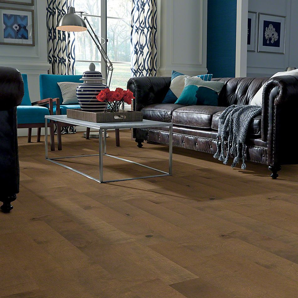 Shaw Floors Shaw Hardwoods Biscayne Bay Oceanside 00529_SW520