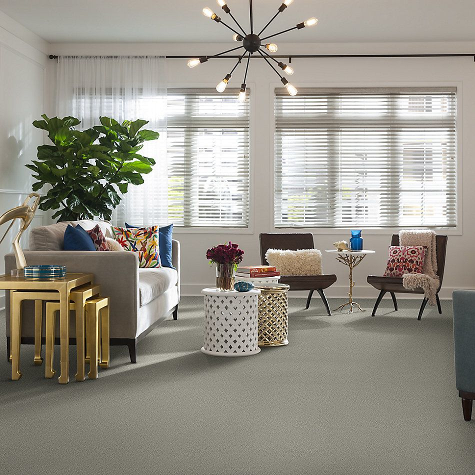 Shaw Floors Simply The Best Boundless Iv Net Reflection 00530_5E506
