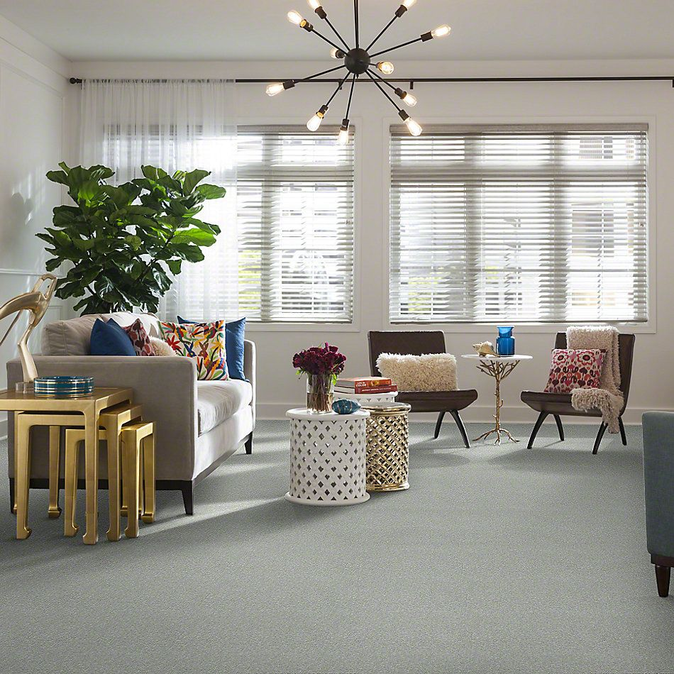 Shaw Floors Value Collections Dyersburg Classic 12 Net Morning Fog 00530_E9206