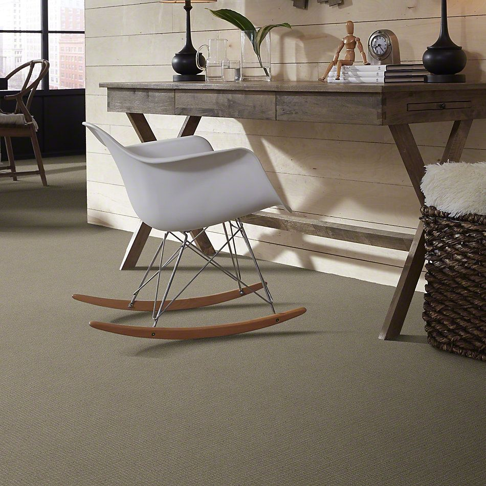 Shaw Floors Roll Special Xv872 Gauntlet 00530_XV872