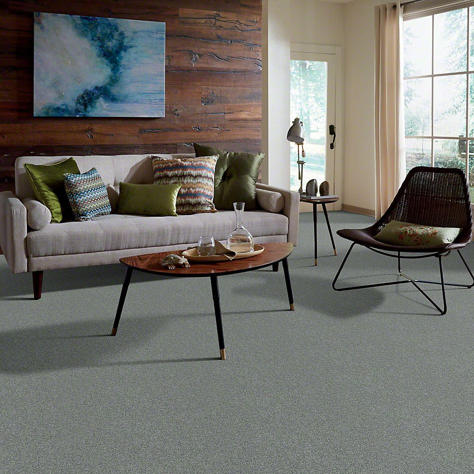 Shaw Floors Anso Colorwall Platinum Texture 12′ Bar Harbor 00531_EA572