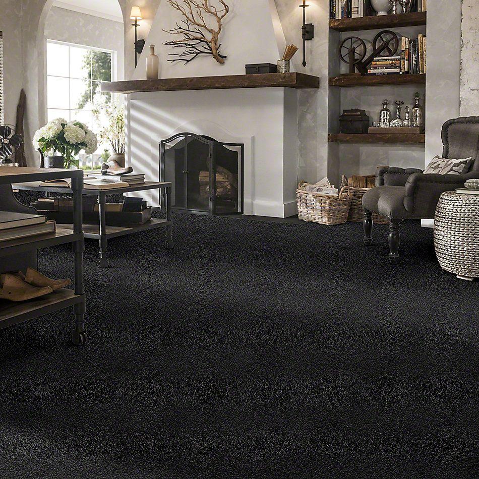 Shaw Floors Anso Colorwall Platinum Twist Victoria Falls 00532_EA576