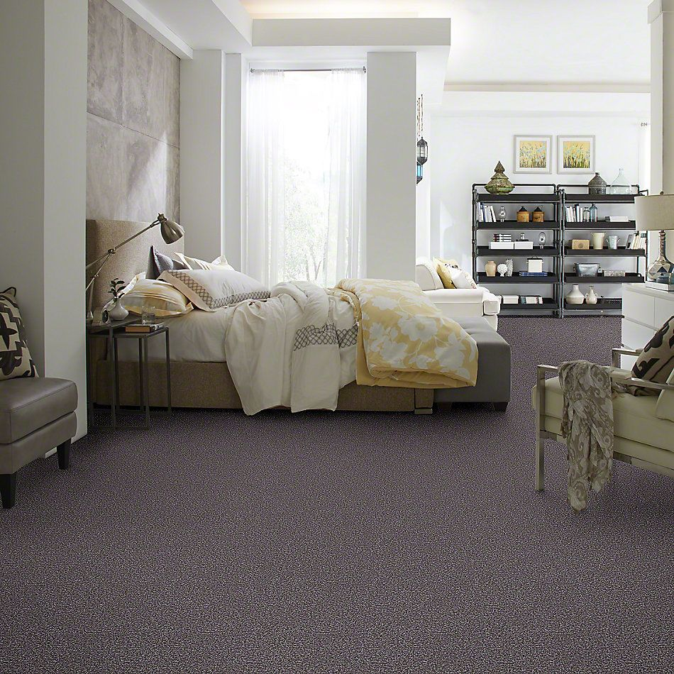 Shaw Floors Value Collections Remember Me (b) Net Coffee Bean 00533_E0891