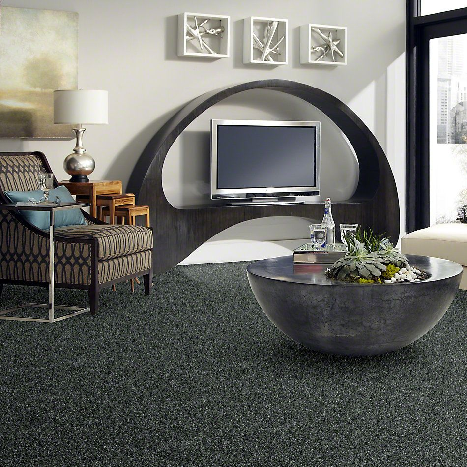 Shaw Floors Dyersburg Classic 15′ Steel Beam 00534_E0948