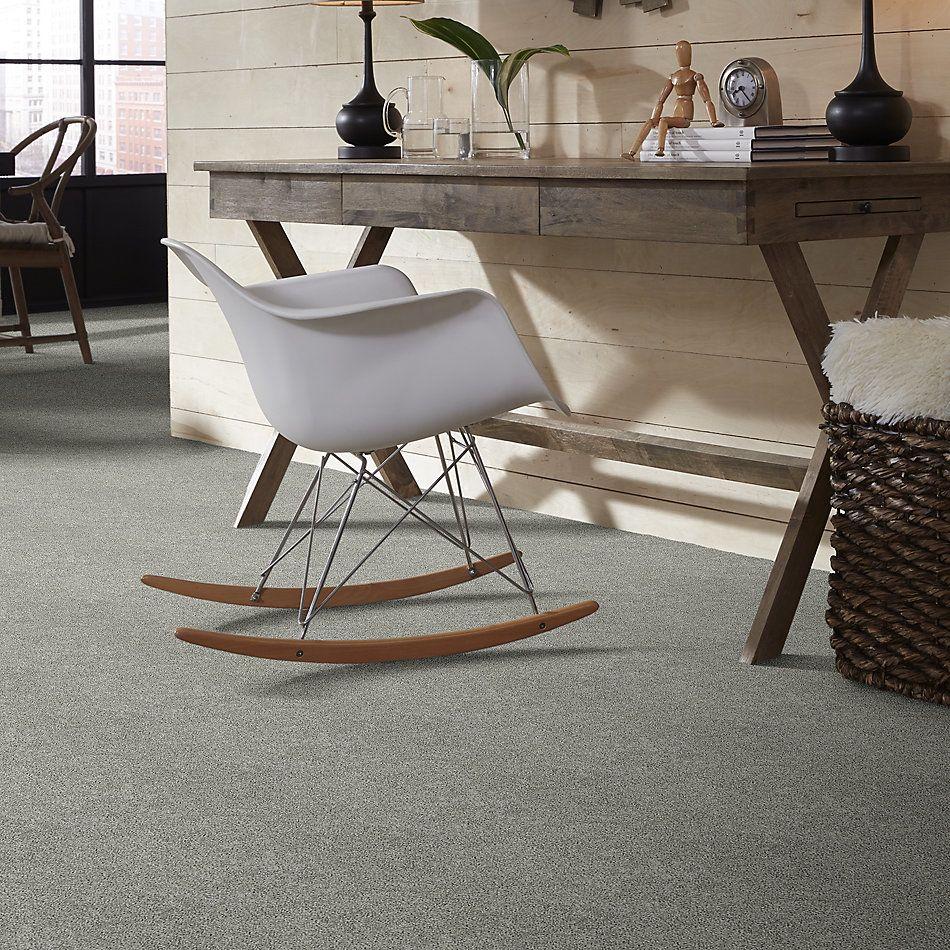 Shaw Floors Value Collections Platinum Twist Net Elephant Gray 00534_E9330