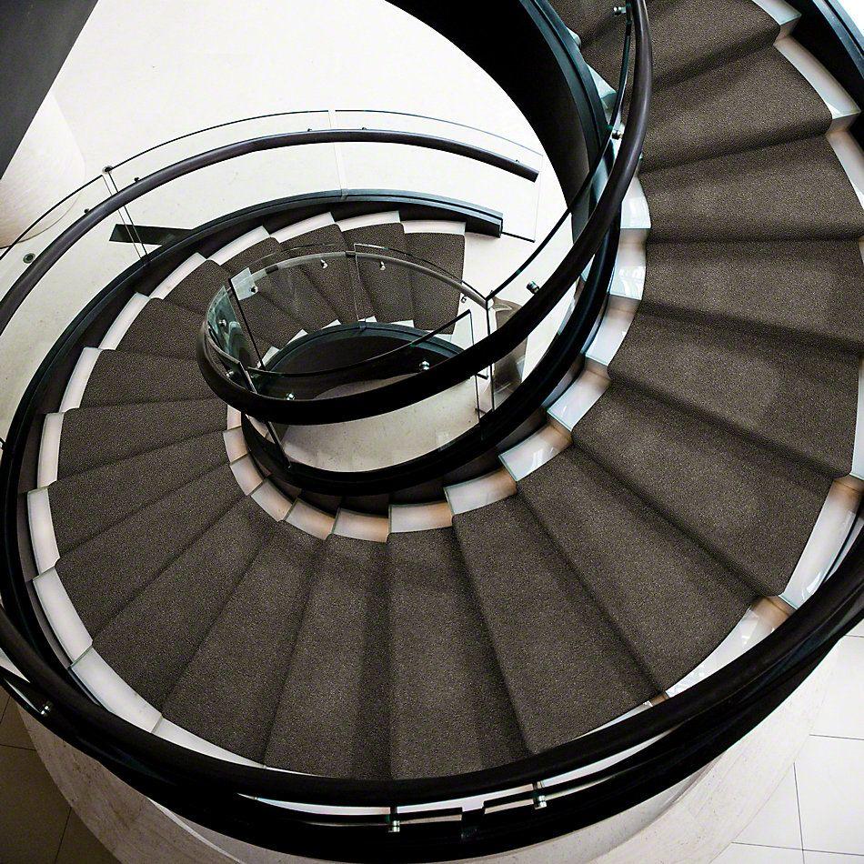 Anderson Tuftex Shaw Design Center New Brighton Cityscape 00537_866SD