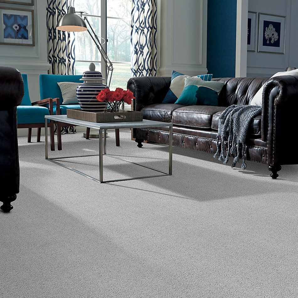Shaw Floors Value Collections Take The Floor Twist II Net Gray Owl 00538_5E070
