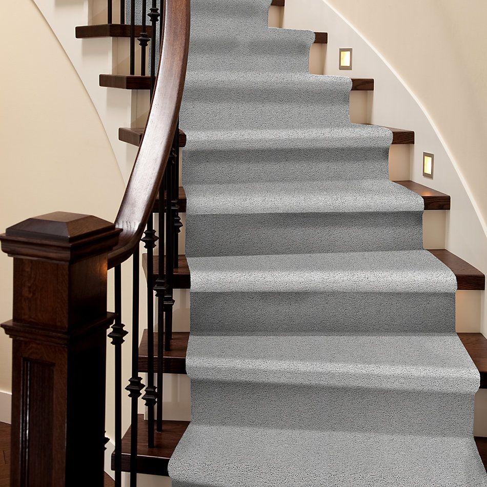 Shaw Floors Nfa/Apg Color Express Twist II Lg Gray Owl 00538_NA219