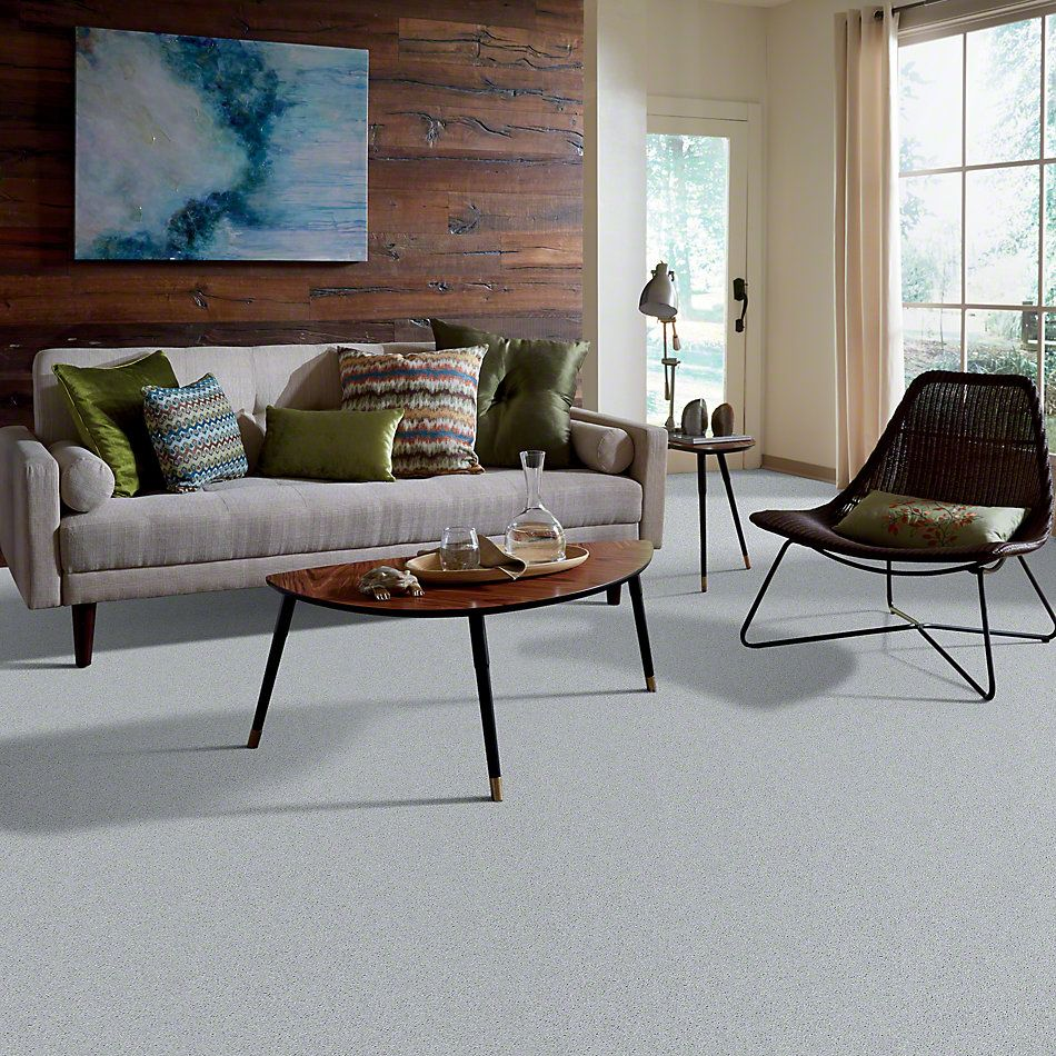 Shaw Floors All Star Weekend I 15′ Dove 00540_E0141