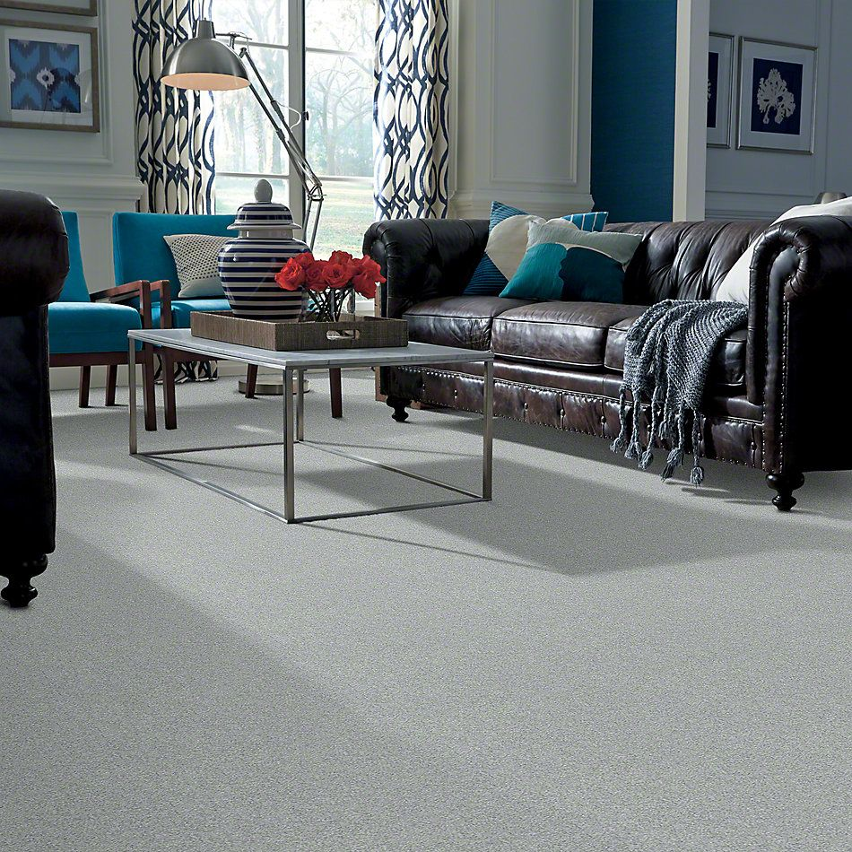 Shaw Floors Anso Colorwall Design Texture Platinum 12′ Fossil 00541_52T73