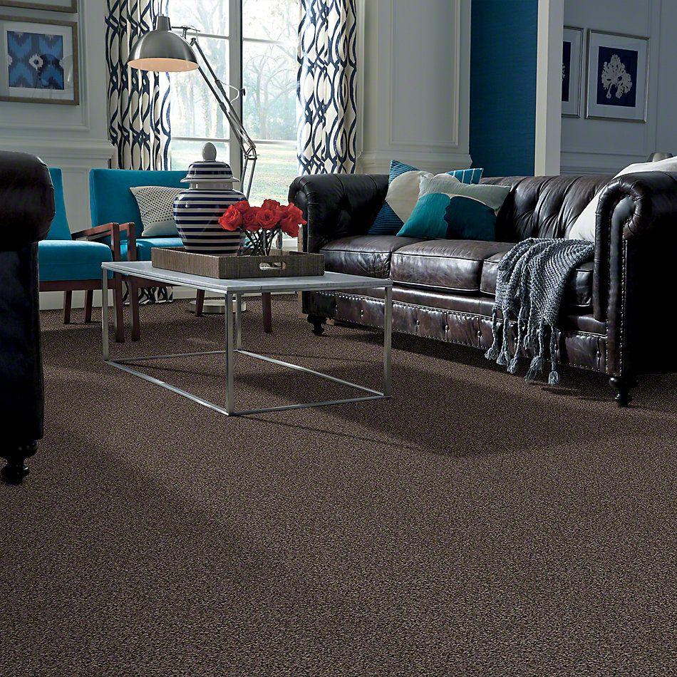 Shaw Floors Shaw Design Center Toe To Toe (t) Java Bean 00541_5C750