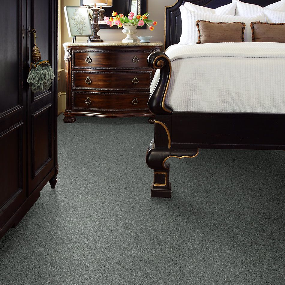 Shaw Floors Value Collections Take The Floor Texture II Net Reflection 00541_5E067