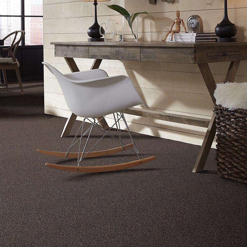 Shaw Floors Cabinanet Tweed Java Bean 00541_E0665