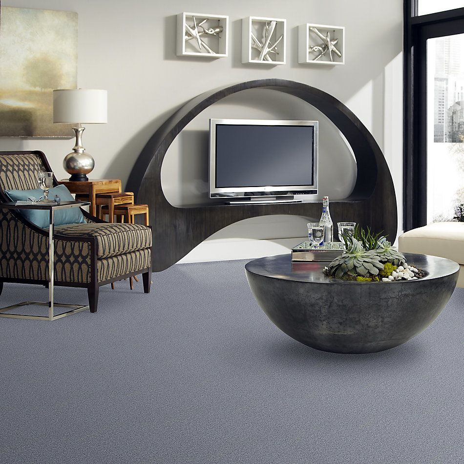 Shaw Floors Value Collections All Star Weekend I 12 Net Dolphin 00541_E0792