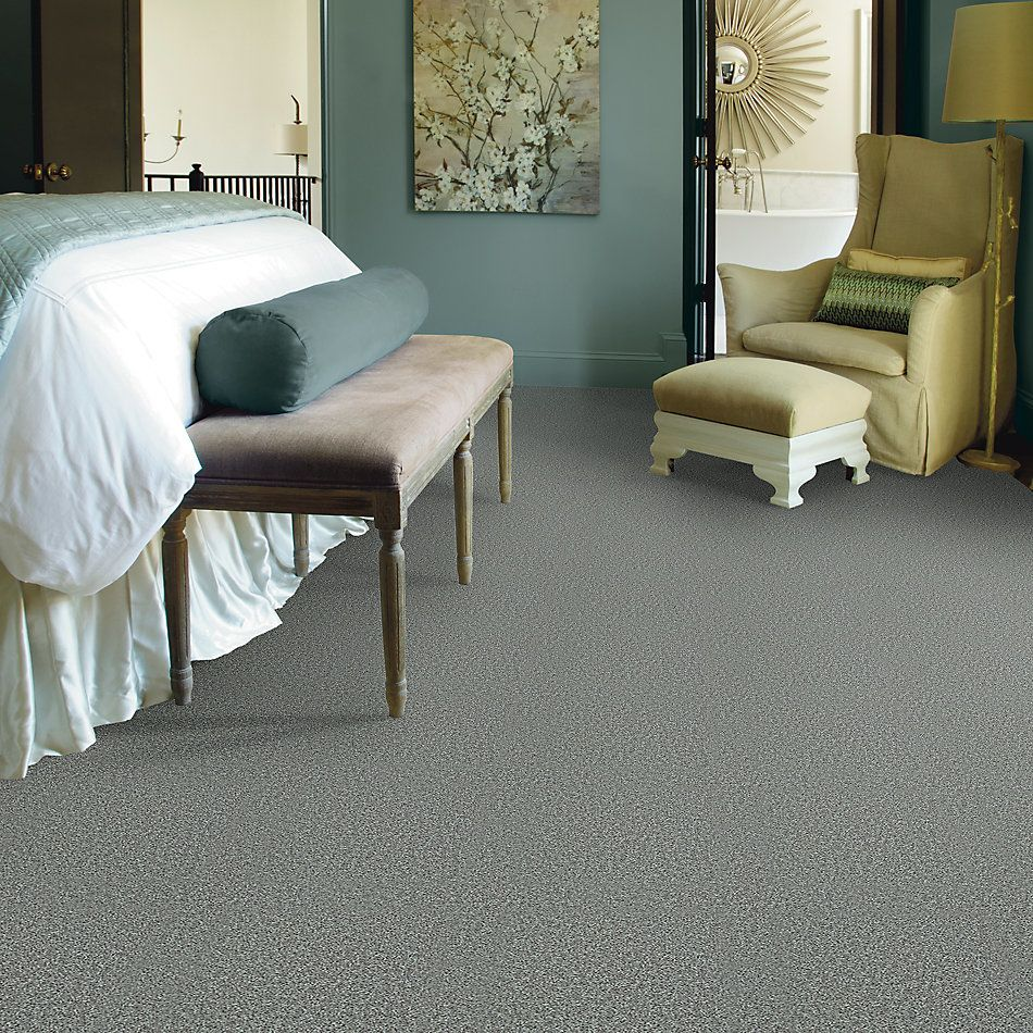 Shaw Floors Value Collections Play Hard Net Gracious 00543_E0797