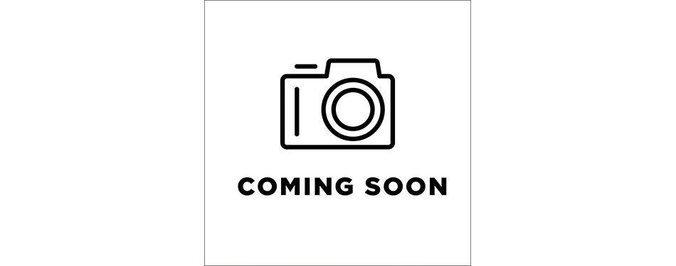 Anderson Tuftex Pawparazzi I Steel Wool 00545_ZZ092