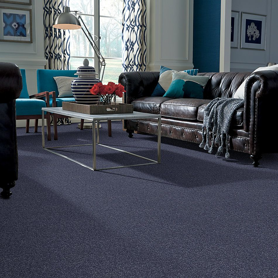 Shaw Floors Value Collections All Star Weekend 1 15 Net Charcoal 00545_E0793