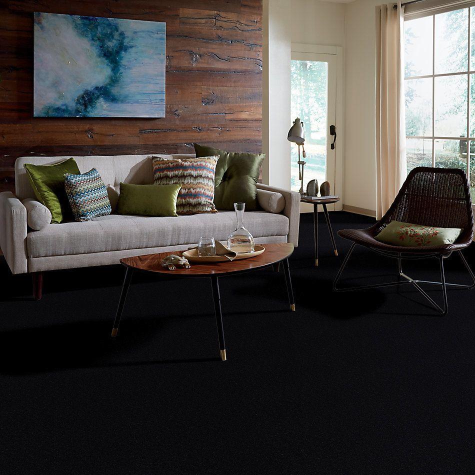 Shaw Floors Shaw Design Center Kinship 3.25 Black Ice 00546_DC200