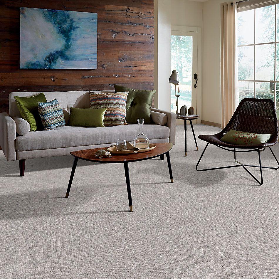 Shaw Floors Shaw Flooring Gallery Subtle Shimmer Loop Ash 00550_5568G