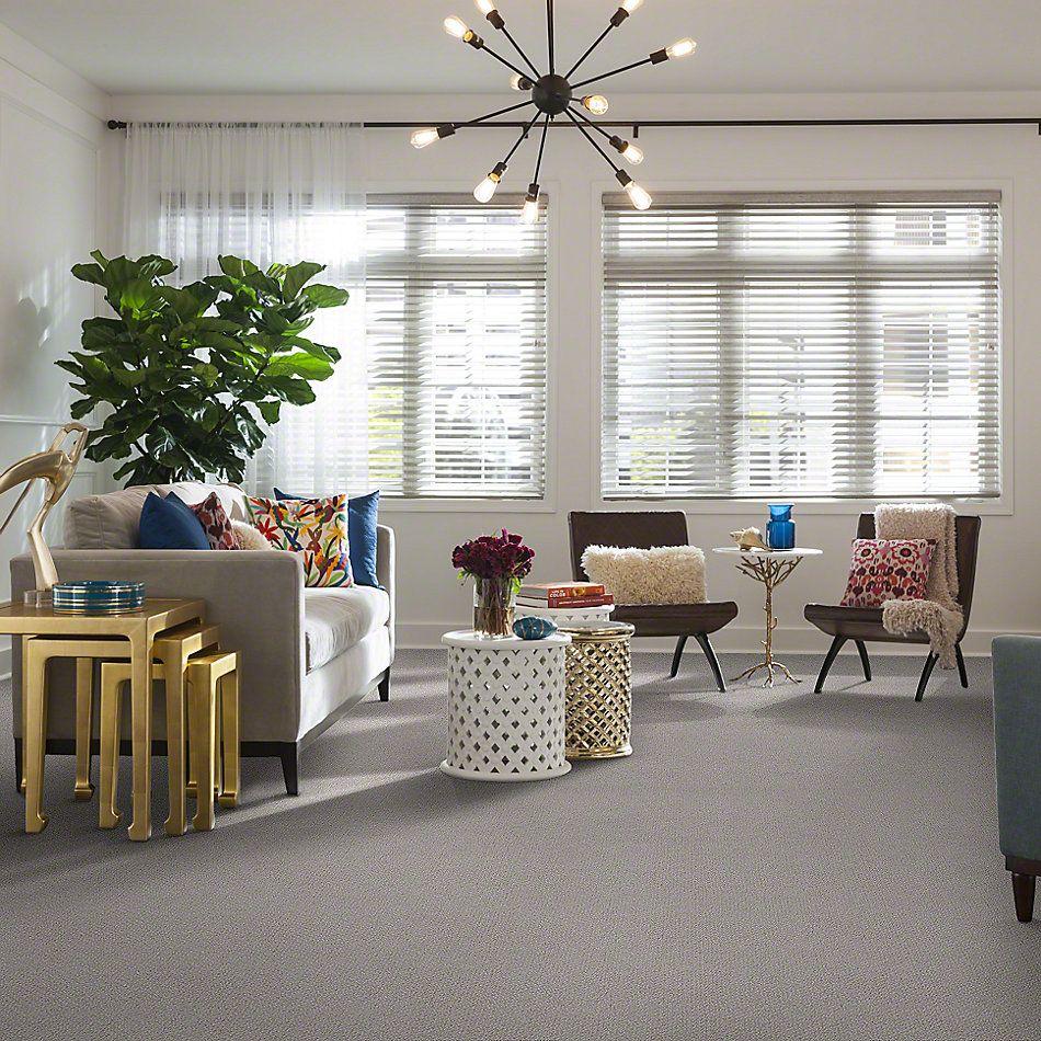 Shaw Floors Shaw Design Center True Reflections Loop Ash 00550_5C782