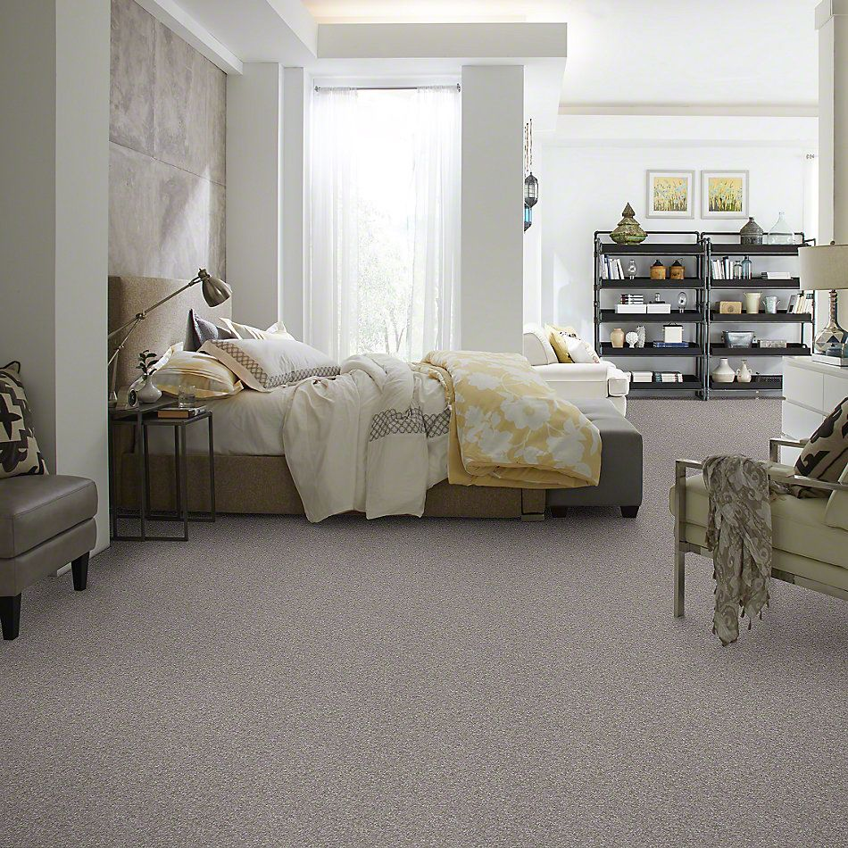 Shaw Floors SFA Dakota Springs Pewter 00550_EA604