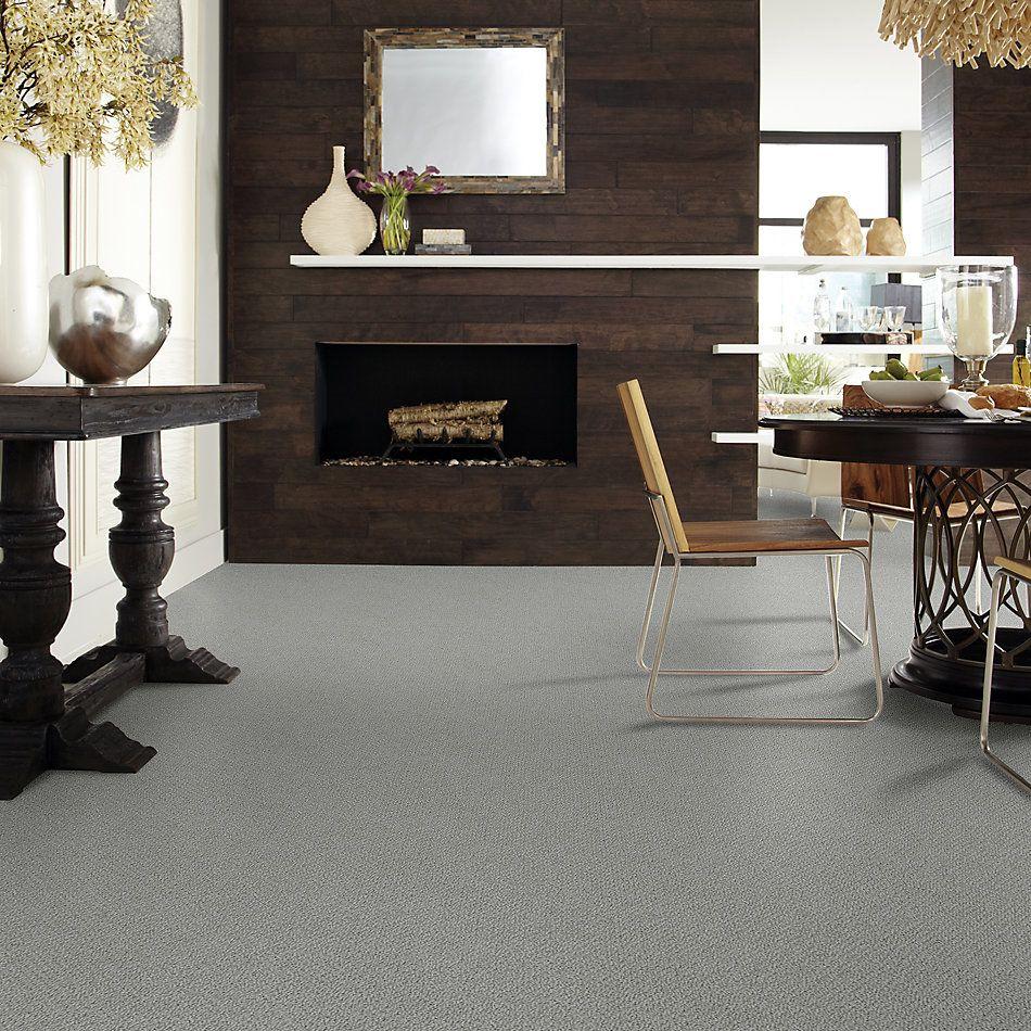 Shaw Floors Shaw Flooring Gallery Subtle Shimmer Loop Charcoal 00551_5568G