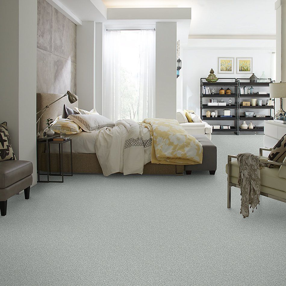Shaw Floors Value Collections Take The Floor Twist I Net Pewter 00551_5E069