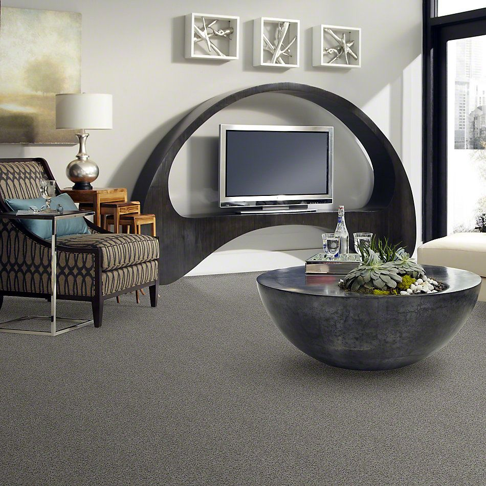 Shaw Floors Value Collections That's Right Net Terrace 00551_E0925