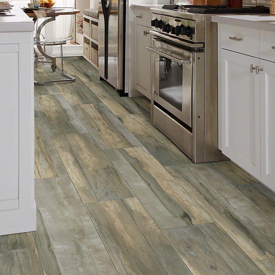 Shaw Floors Ceramic Solutions Arcadian Scene Terrain 00570_CS81W