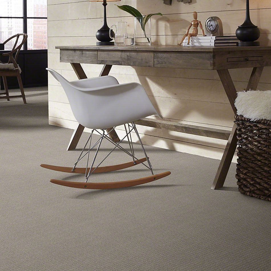 Shaw Floors Complete Control Silhouette 00570_E9722
