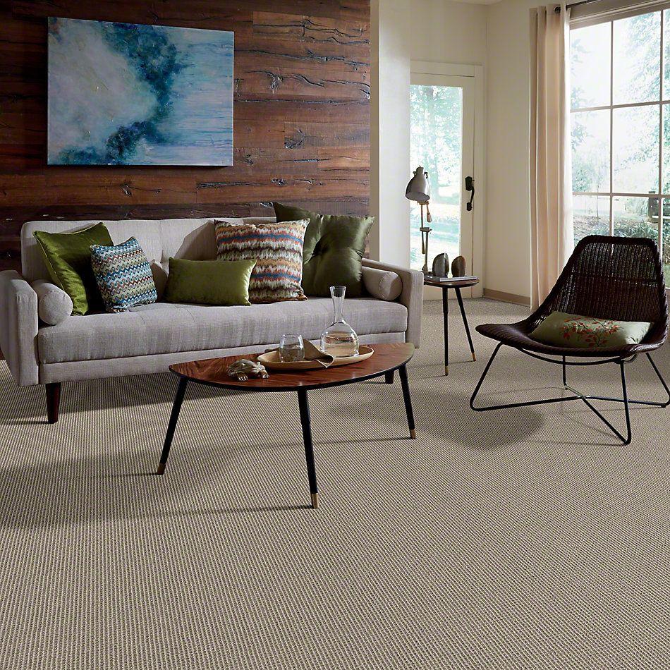 Anderson Tuftex Classics New Avenue Grayscale 00570_ZZ022