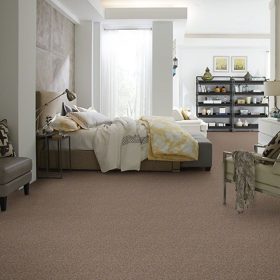 Anderson Tuftex Shaw Design Center Turn It Up II Simply Taupe 00572_942SD