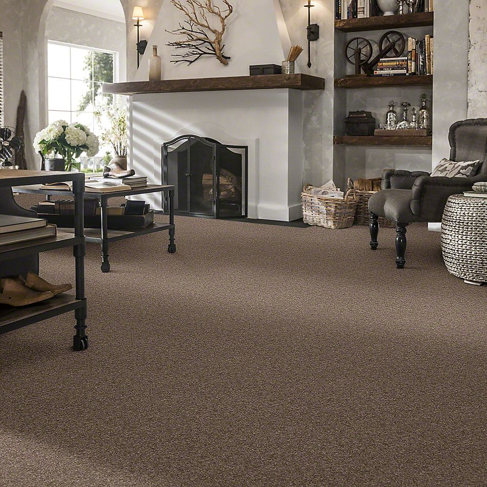 Anderson Tuftex Classics Serendipity II Simply Taupe 00572_Z6942