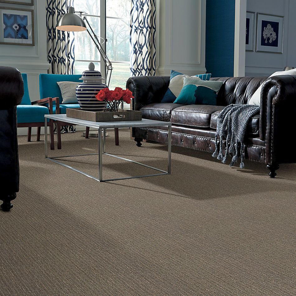 Anderson Tuftex Builder Going Global II Demure Taupe 00573_ZB776