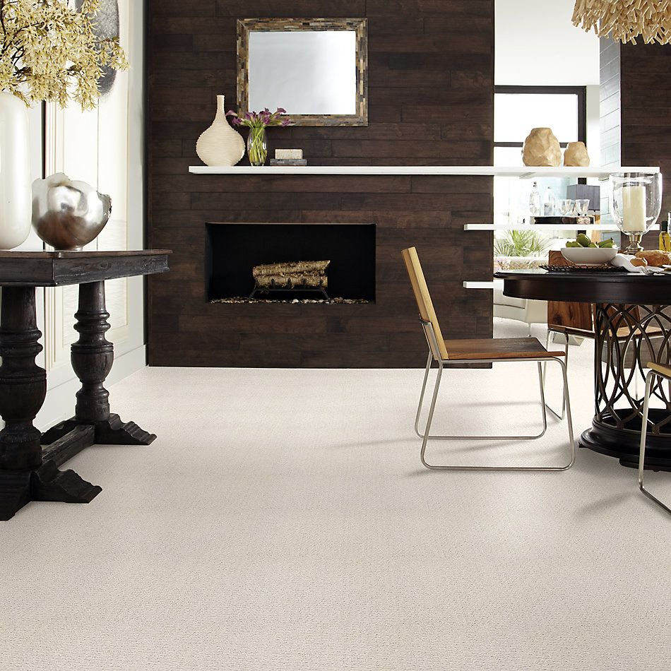 Shaw Floors Value Collections Complete Control Net Rock Crystal 00574_E9775