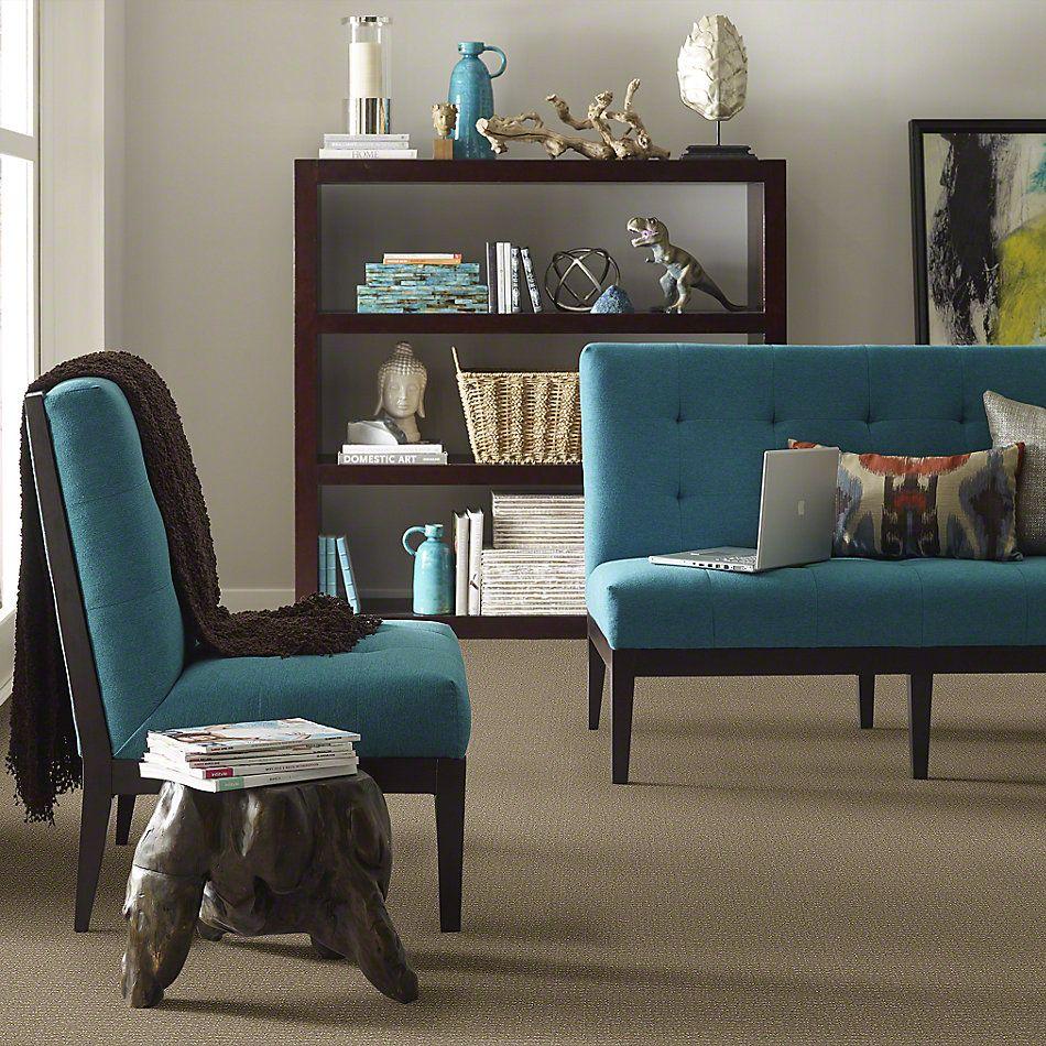 Anderson Tuftex Shaw Design Center Callista Greige 00575_863SD