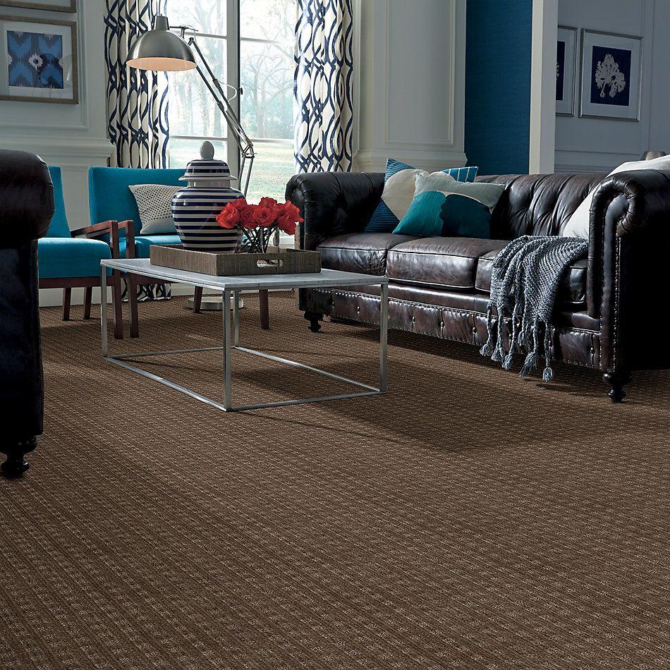 Anderson Tuftex Shaw Design Center Charmed Life Urbana 00575_875SD