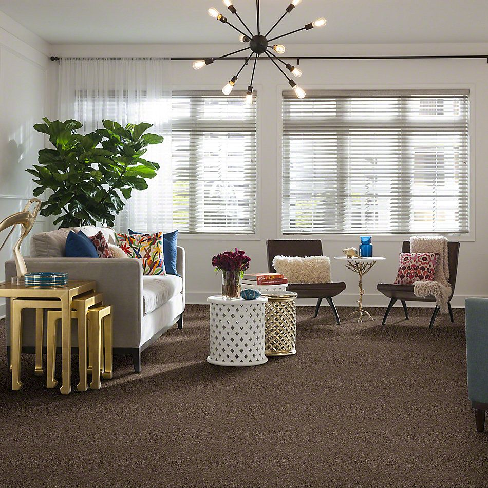 Anderson Tuftex American Home Fashions My Wonderland Misty Taupe 00575_ZA866